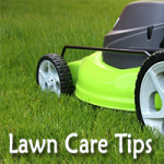 Lawn-Care-Tips-Image