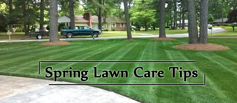 Spring-Lawn-Care-Tips-Image