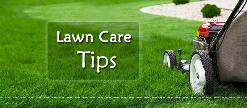 Tips-for-Lawn-Care-Image