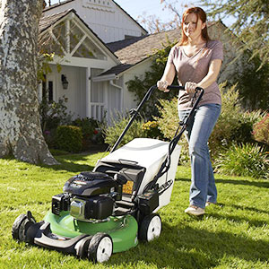 Self-propelled Lawn Mowers image