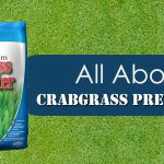 All about Crabgrass Preventer image