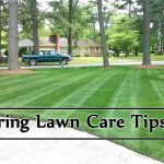 Spring Lawn Care Tips image