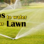 Tips to water your Lawn image