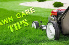 Tips and Tricks for Lawn Care during Spring, Winter, Summer