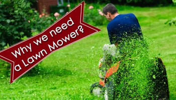 What is the use of Lawn Mower & why we need it for our Lawn?
